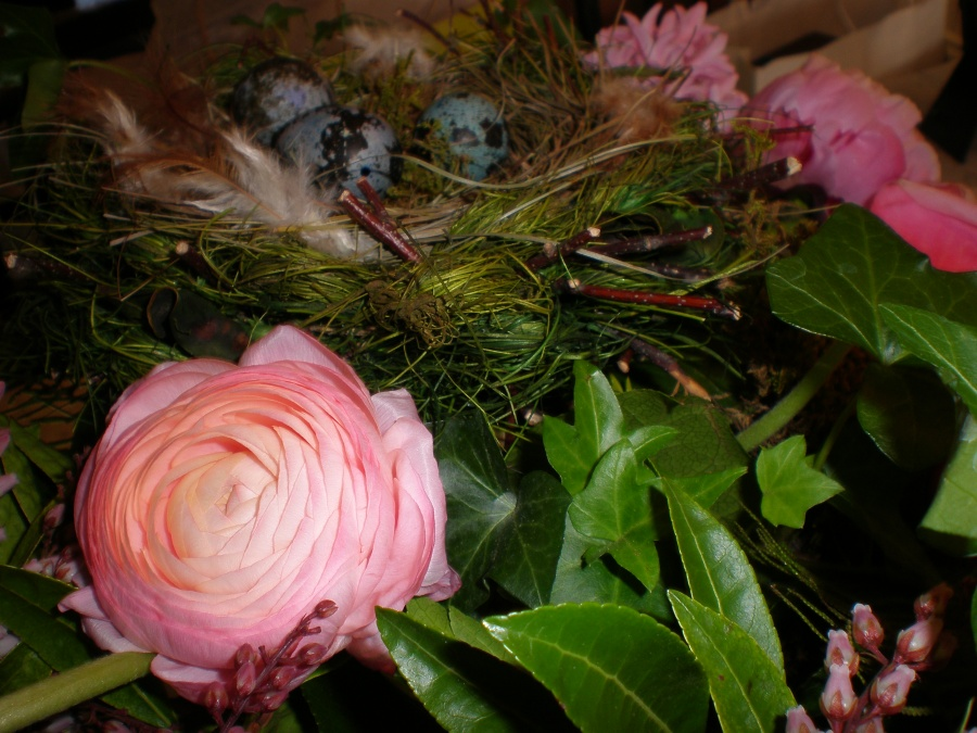 Fluffing the Nest at Rose Cottage
