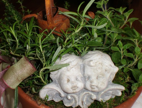 Hint of Spring - A Little Kitchen Herb Garden