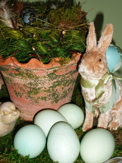 eggs-bunny-and-moss-pot