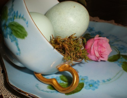 forget-me-not-eggs-pink-rose