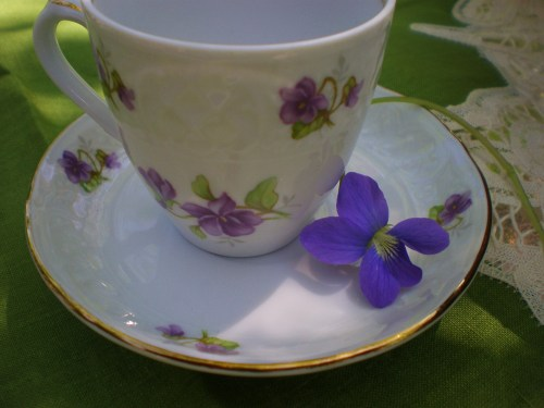 demitasse and violet