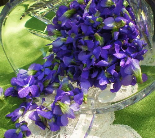 glass basket and violets