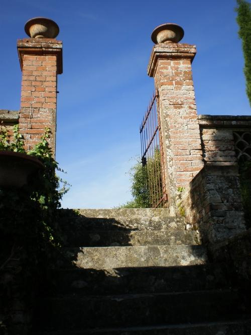 to south garden2