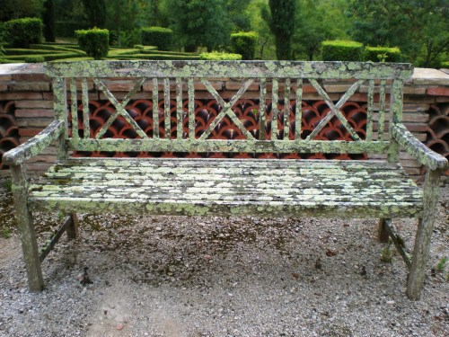 Bench with lichen FAV