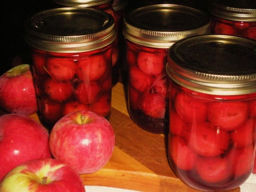 Crab Apple Pickles