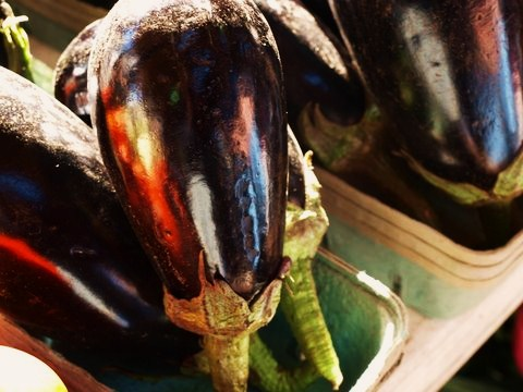 eggplant FAV