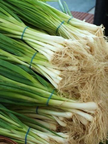 green onions FAV