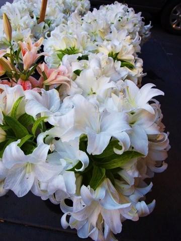 lilies FAV2