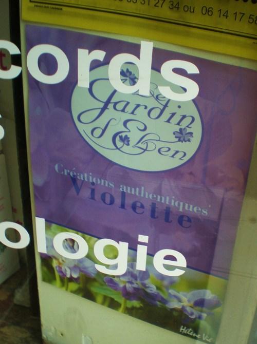 violet sign