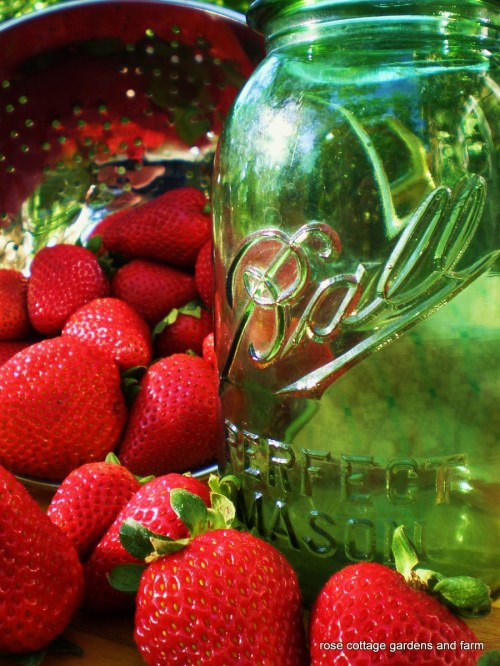 Green Ball Jar and Strawberries