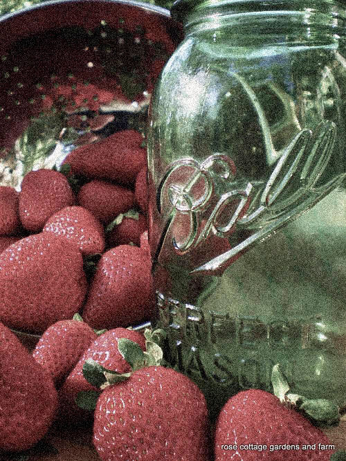green-ball-jar-and-strawberries