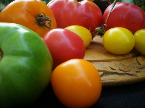 Heirloom Tomatoes on wood tray FAV2
