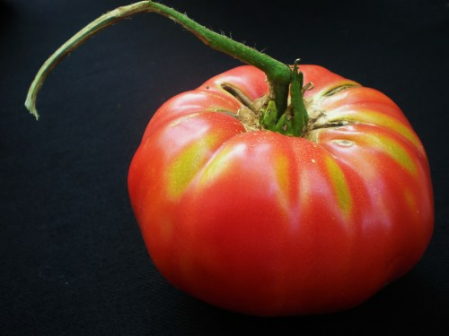 Just Picked Heirloom FAV