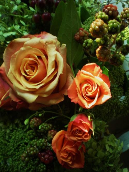 roses and blackberries FAV1